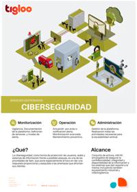 Hoja de Producto Sistemas Gestionados de Ciberseguridad