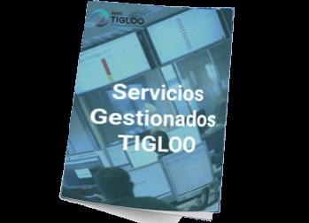 Servicios Gestionados TIGLOO