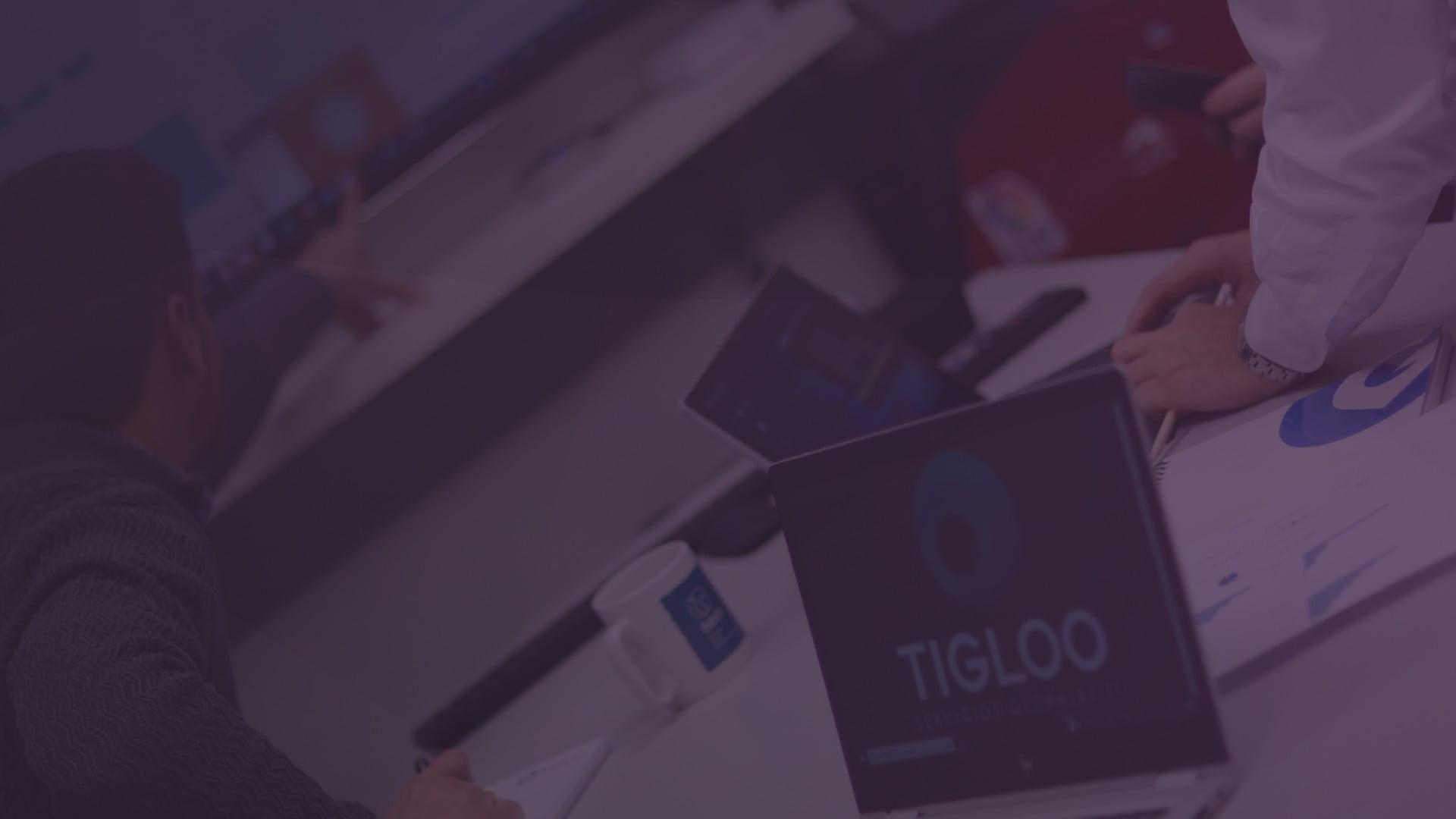 Slider-Tigloo-QM